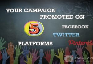 Crowdfunding Campaign Promoted On 5 Social Media