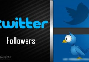 Twitter Followers For Your Twitter Account