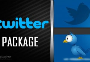 Twitter Likes, Retweets, Followers – Twitter Package