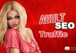 Adult SEO Traffic From Multiple Sources