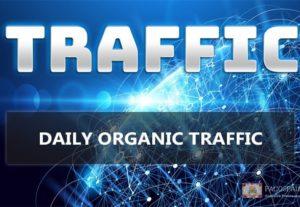 Organic Keyword Targeted Web Traffic 30 days