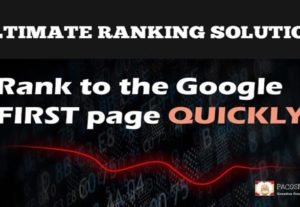 All In One Whitehat SEO Service