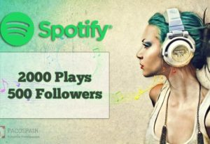 Spotify Followers And Spotify Plays Music Package