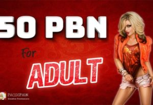 Creating 50 PBN For Adult Websites – Quality Adult SEO