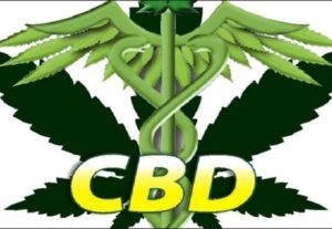 I will drive USA cbd traffic to your marijuana, hemp oil to get sales