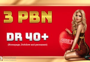 We create 3 Permanent DR 40+ Homepage PBN Dofollow Backlinks